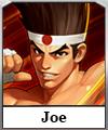 avatar joe